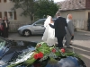 20080809_Hochzeit Plocher_CIMG3554